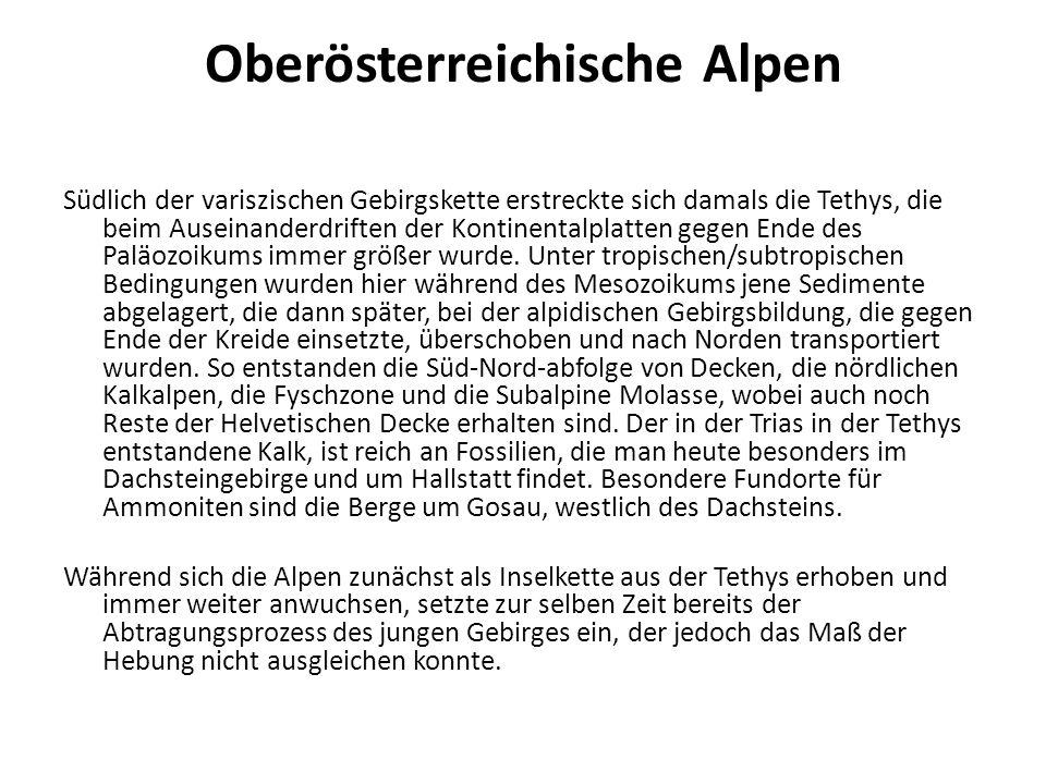 Oberösterreichische Alpen Südlich der variszischen Gebirgskette erstreckte sich damals die Tethys, die beim Auseinanderdriften der Kontinentalplatten gegen Ende des Paläozoikums immer größer wurde.