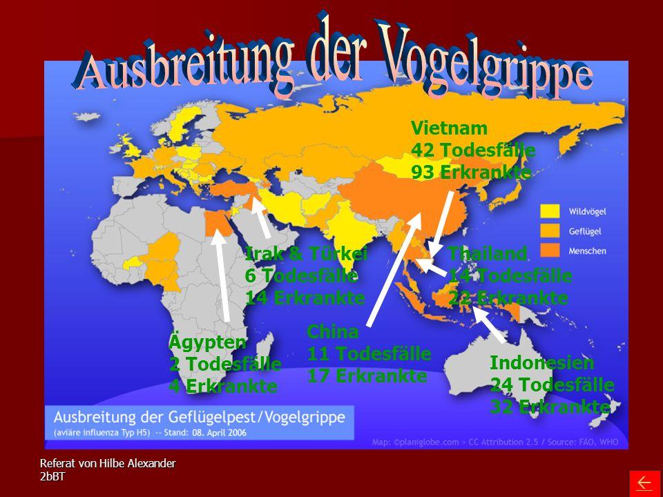 Referat von Hilbe Alexander 2bBT Ägypten 2 Todesfälle 4 Erkrankte Irak & Türkei 6 Todesfälle 14 Erkrankte Indonesien 24 Todesfälle 32 Erkrankte China