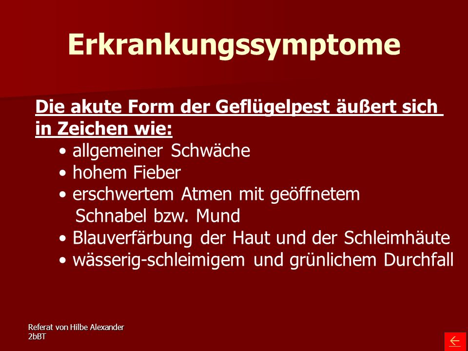 Referat von Hilbe Alexander 2bBT Erkrankungssymptome Die akute Form der Geflügelpest äußert sich in Zeichen wie: allgemeiner Schwäche hohem Fieber ers