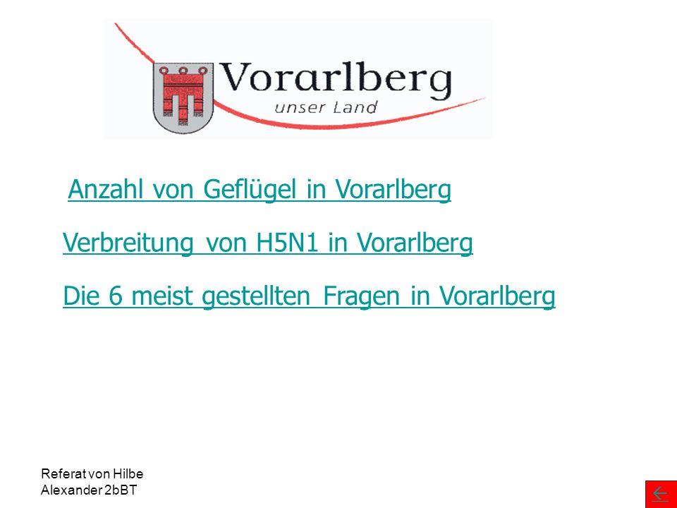 Referat von Hilbe Alexander 2bBT Geflügel in Vorarlberg 3.18051Wolfurt 26625Schwarzach 4.74894Lustenau Nord 84140Lochau 67040Lauterach 18517Kennelbach 90143Hörbranz 1.45669Höchst 1.57862Hard 57422Gaißau 2.05722Fußach 3.842186Dornbirn 57735Bregenz 75432Bildstein Anzahl TiereGeflügelhalterÜberwachungszone 