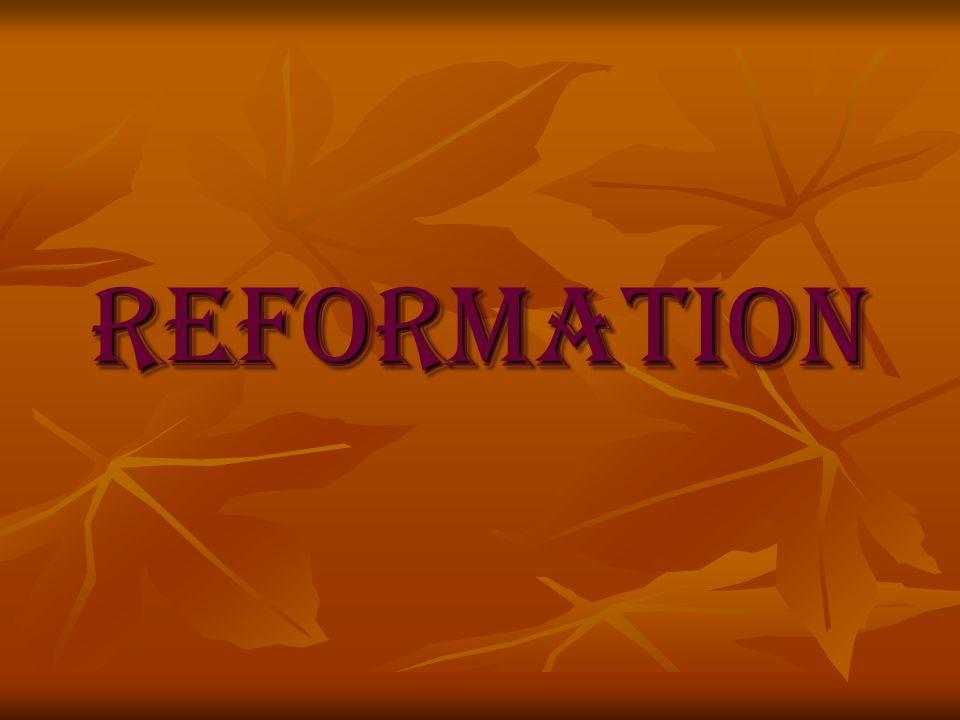 Situation vor der Reformation Unzufriedenheit unter den Bauern Unzufriedenheit unter den Bauern Missstände in der Kirche Missstände in der Kirche Soziale Unterschiede Soziale Unterschiede Verstrickung der Kirche in weltliche Angelegenheiten Verstrickung der Kirche in weltliche Angelegenheiten