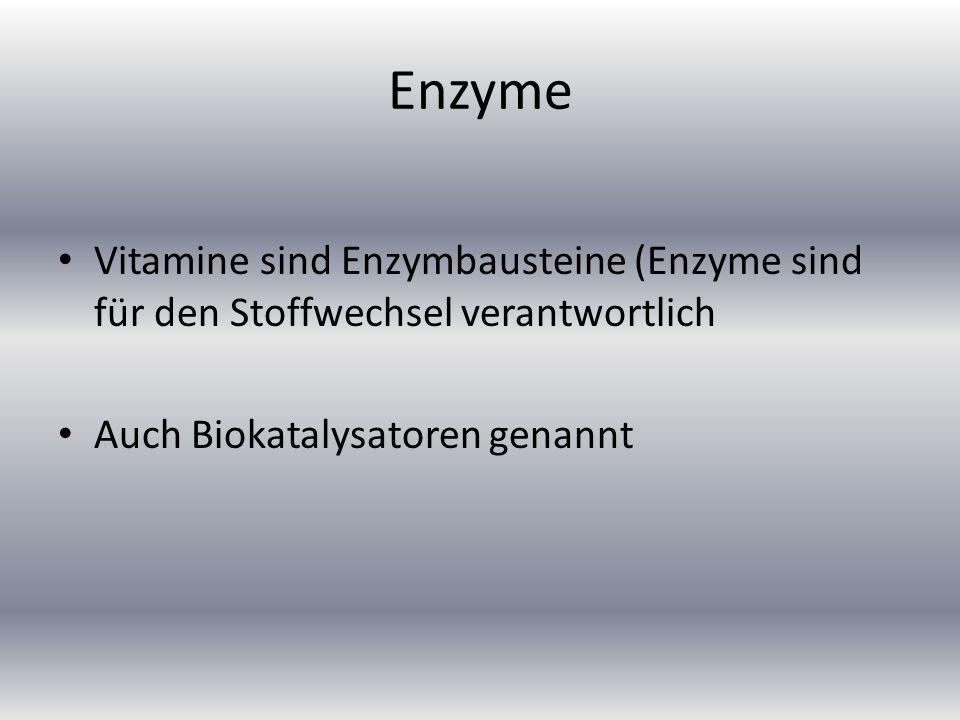 Enzyme Vitamine sind Enzymbausteine (Enzyme sind für den Stoffwechsel verantwortlich Auch Biokatalysatoren genannt