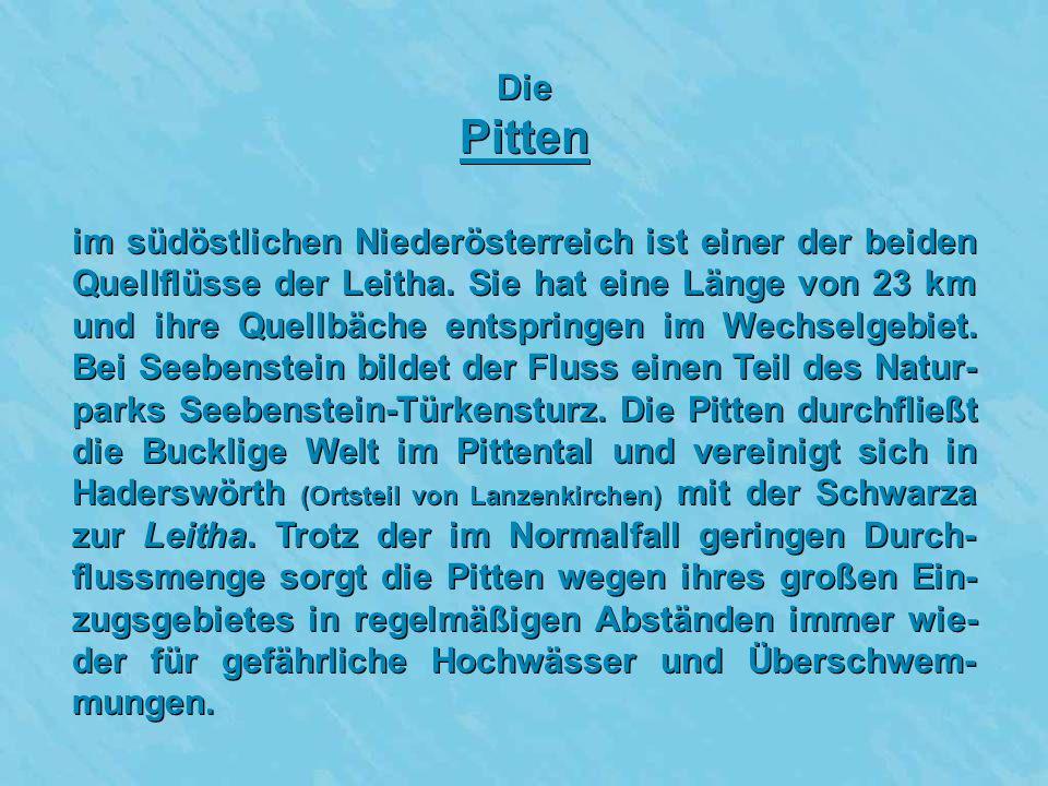 Die Pitten im südöstlichen Niederösterreich ist einer der beiden Quellflüsse der Leitha.