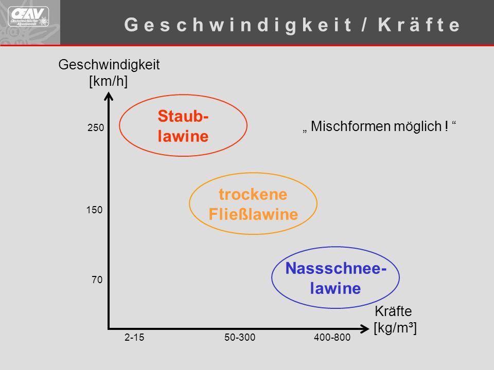 """Geschwindigkeit [km/h] Kräfte [kg/m³] 400-80050-3002-15 70 150 250 Staub- lawine Nassschnee- lawine trockene Fließlawine G e s c h w i n d i g k e i t / K r ä f t e """" Mischformen möglich ."""