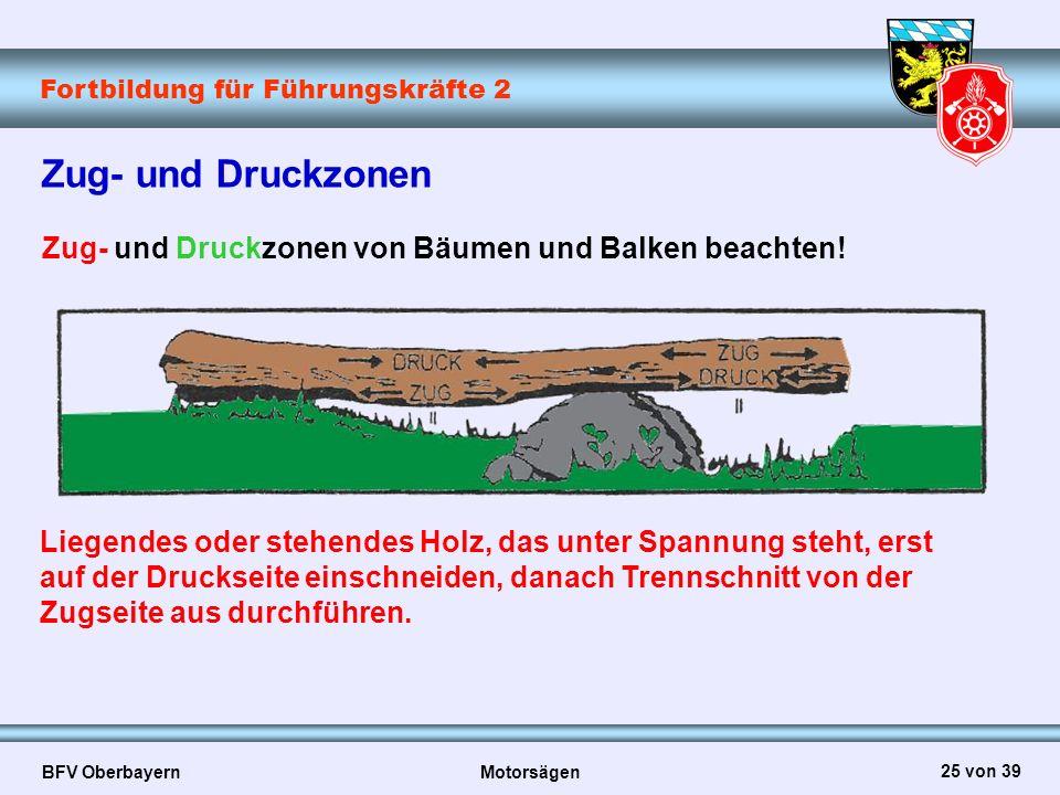Fortbildung für Führungskräfte 2 BFV Oberbayern Motorsägen 25 von 39 Zug- und Druckzonen Zug- und Druckzonen von Bäumen und Balken beachten! Liegendes