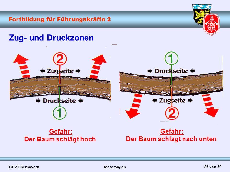 Fortbildung für Führungskräfte 2 BFV Oberbayern Motorsägen 26 von 39 Zug- und Druckzonen Gefahr: Der Baum schlägt hoch Gefahr: Der Baum schlägt nach u