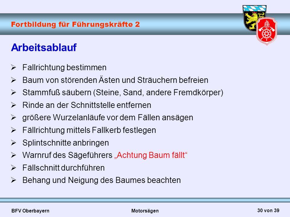 Fortbildung für Führungskräfte 2 BFV Oberbayern Motorsägen 30 von 39 Arbeitsablauf  Fallrichtung bestimmen  Baum von störenden Ästen und Sträuchern