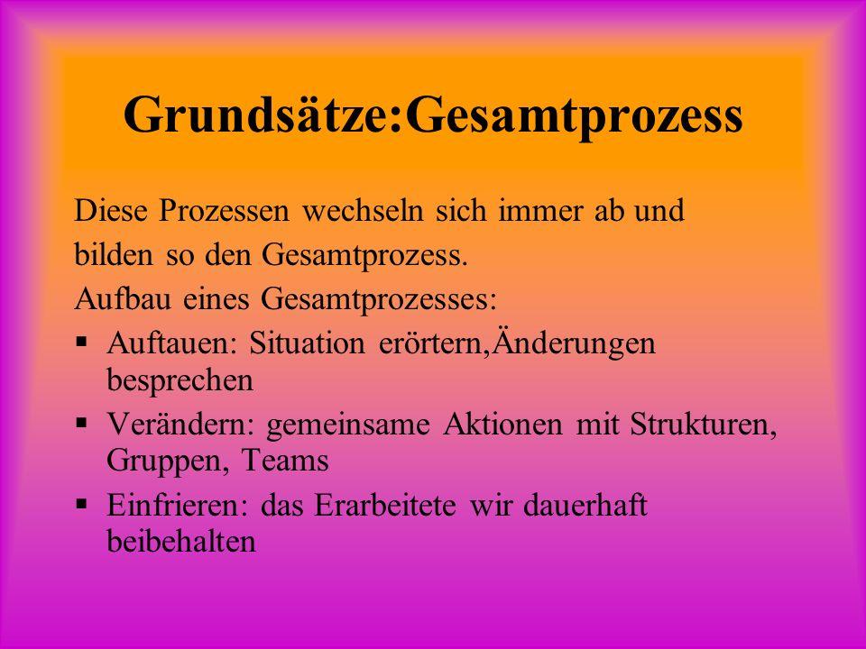 Grundsätze:Gesamtprozess Diese Prozessen wechseln sich immer ab und bilden so den Gesamtprozess.