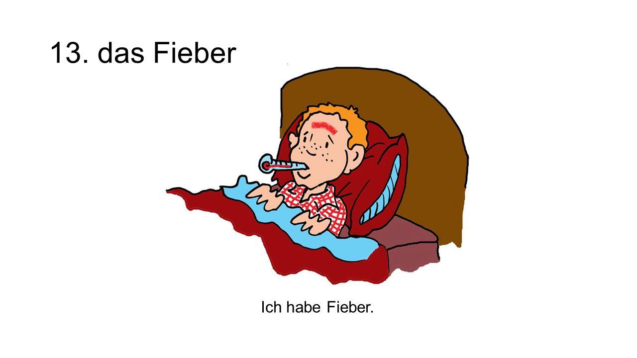 13. das Fieber Ich habe Fieber.