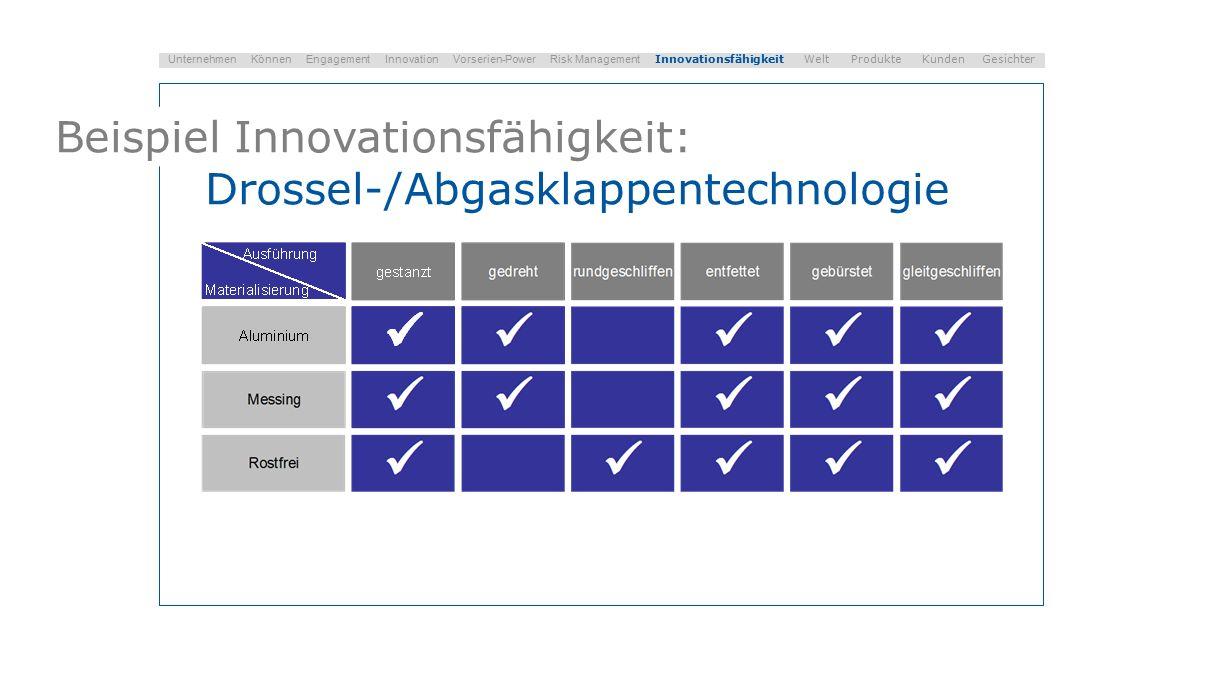 Beispiel Innovationsfähigkeit: Drossel-/Abgasklappentechnologie Unternehmen Können Engagement Innovation Vorserien-Power Risk Management Innovationsfähigkeit Welt Produkte Kunden Gesichter