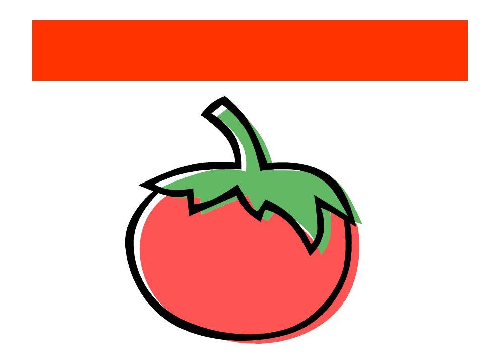 Die Tomate