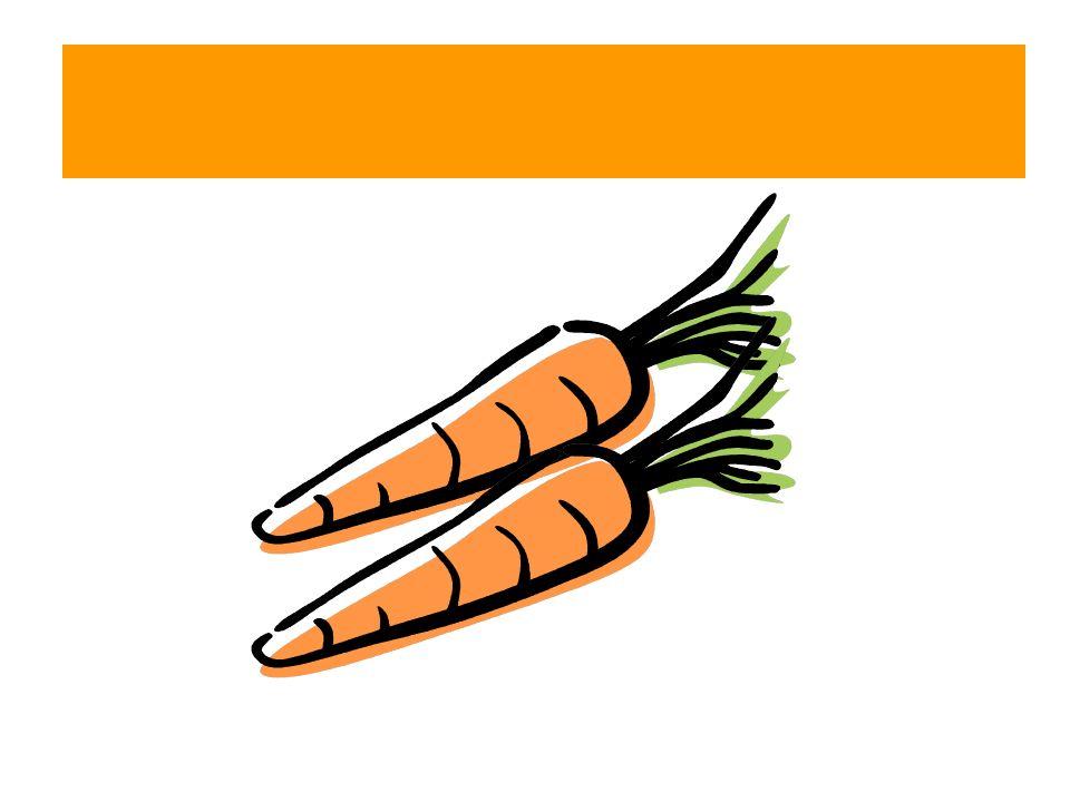 Die Karotten – Die Möhren