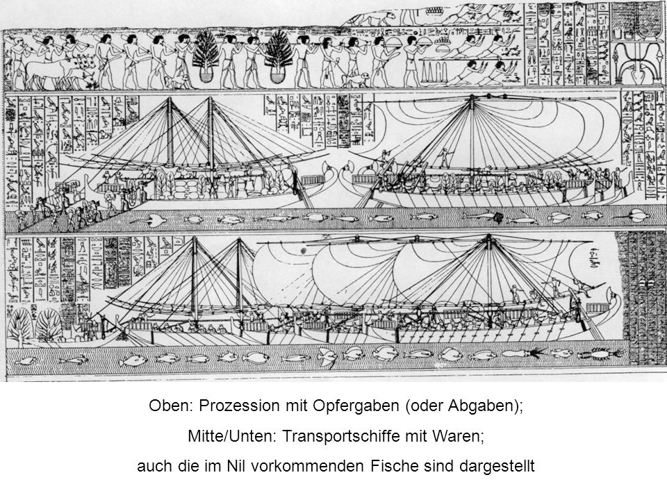 Oben: Prozession mit Opfergaben (oder Abgaben); Mitte/Unten: Transportschiffe mit Waren; auch die im Nil vorkommenden Fische sind dargestellt