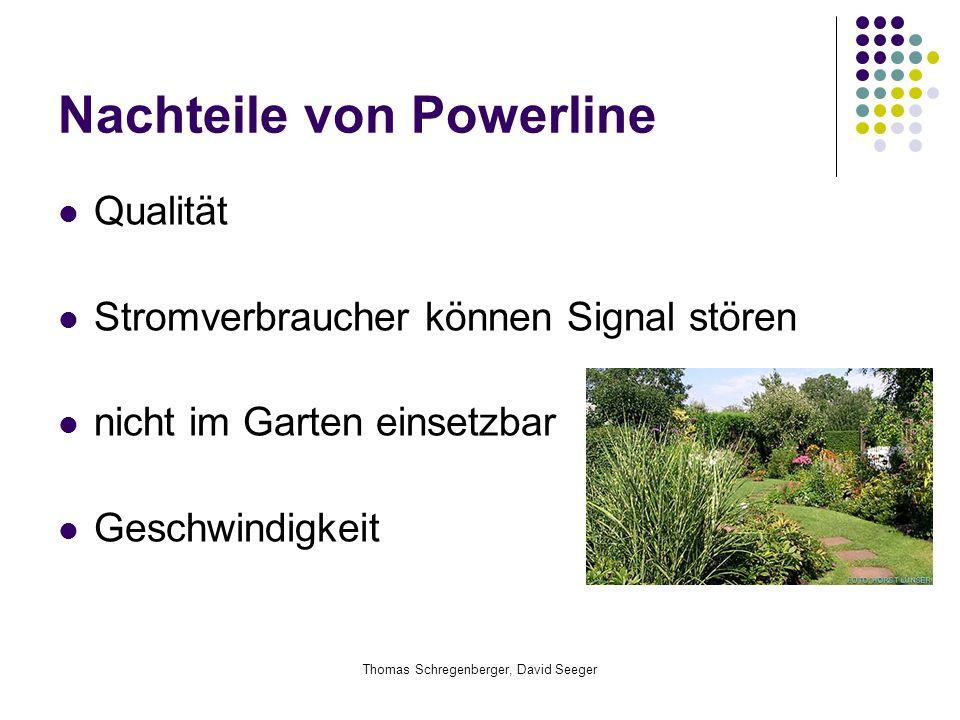 Thomas Schregenberger, David Seeger Nachteile von Powerline Qualität Stromverbraucher können Signal stören nicht im Garten einsetzbar Geschwindigkeit