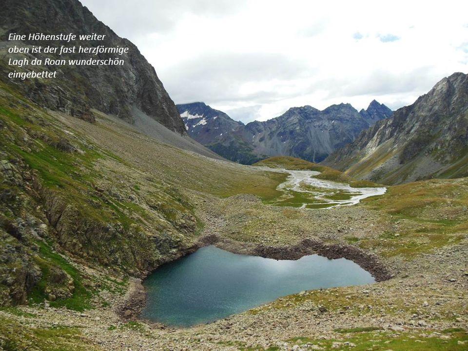 Eine Höhenstufe weiter oben ist der fast herzförmige Lagh da Roan wunderschön eingebettet