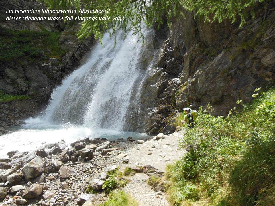 Ein besonders lohnenswerter Abstecher ist dieser stiebende Wasserfall eingangs Valle Vago
