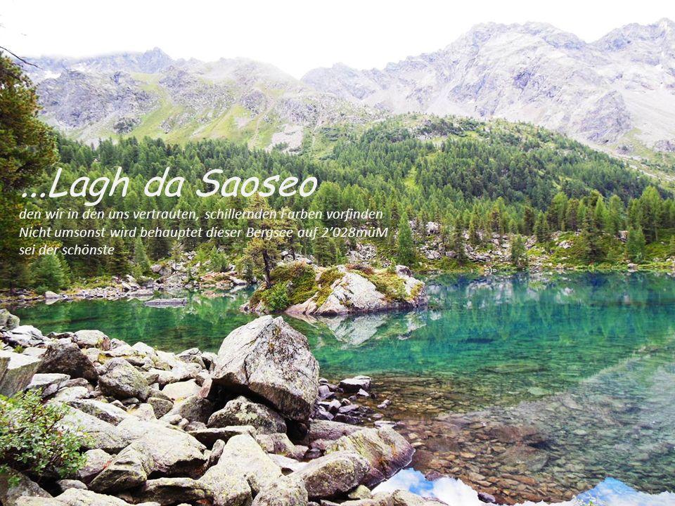...Lagh da Saoseo den wir in den uns vertrauten, schillernden Farben vorfinden Nicht umsonst wird behauptet dieser Bergsee auf 2'028müM sei der schöns