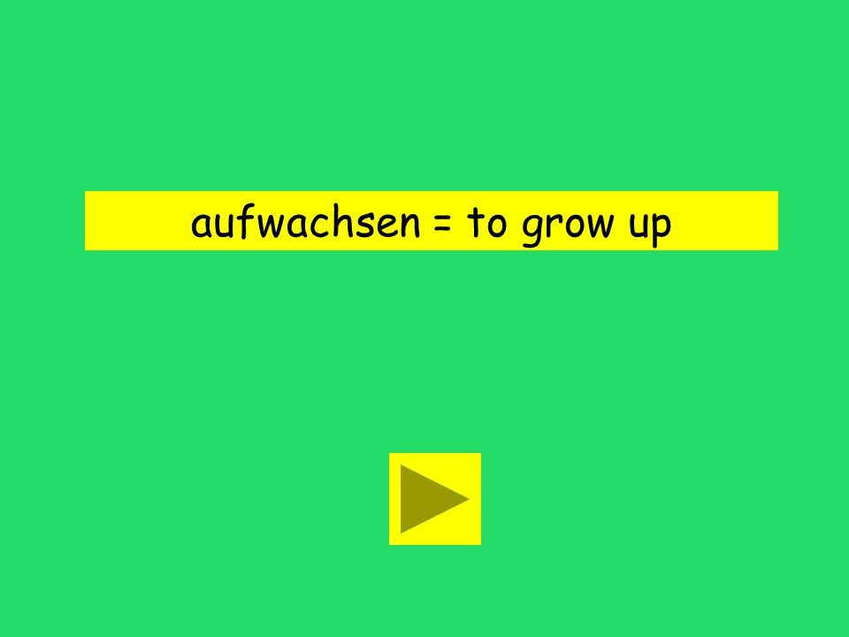 Ja, wir sind mit dem Fernsehen aufgewachsen to be strong to grow upto require