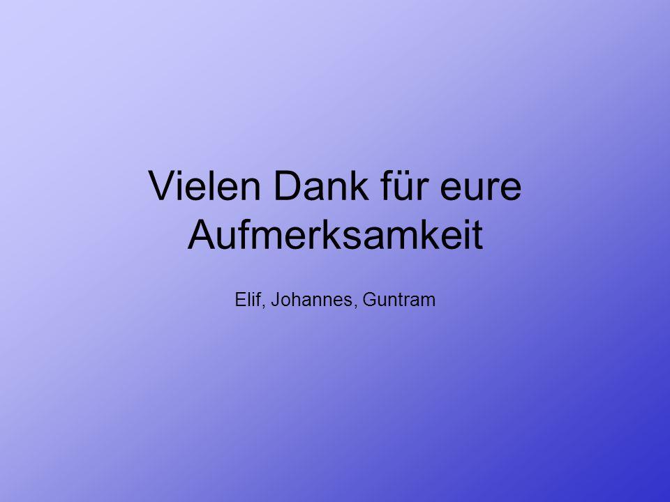 Vielen Dank für eure Aufmerksamkeit Elif, Johannes, Guntram