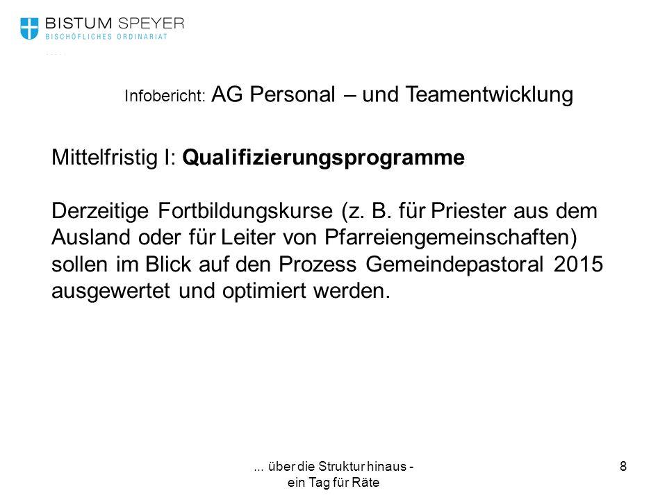 ... über die Struktur hinaus - ein Tag für Räte 8 Infobericht: AG Personal – und Teamentwicklung Mittelfristig I: Qualifizierungsprogramme Derzeitige