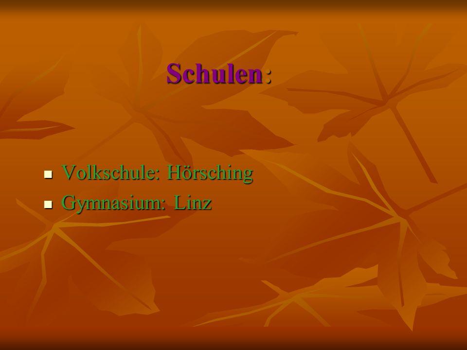 Schulen: Volkschule: Hörsching Volkschule: Hörsching Gymnasium: Linz Gymnasium: Linz