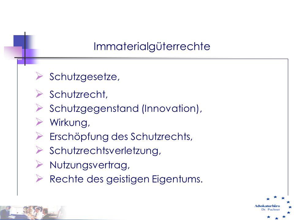 Immaterialgüterrechte  Schutzgesetze,  Schutzrecht,  Schutzgegenstand (Innovation),  Wirkung,  Erschöpfung des Schutzrechts,  Schutzrechtsverlet