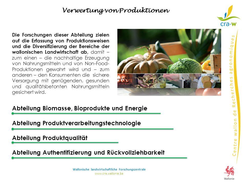 Abteilung Biomasse, Bioprodukte und Energie Abteilung Produktverarbeitungstechnologie Abteilung Produktqualität Abteilung Authentifizierung und Rückvo