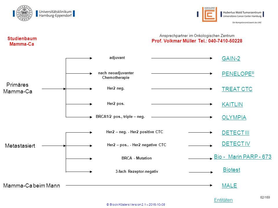 Entitäten Studienbaum Mamma-Ca nach neoadjuvanter Chemotherapie Her2 – neg. - Her2 positive CTC DETECT III Primäres Mamma-Ca adjuvant GAIN-2 Metastasi