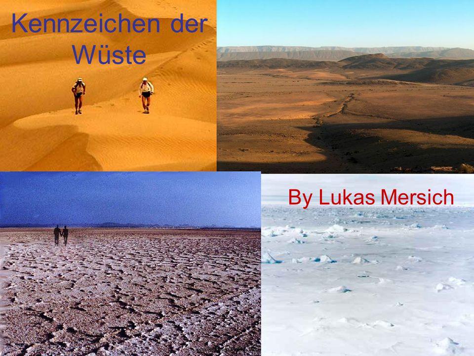 Kennzeichen der Wüste By Lukas Mersich