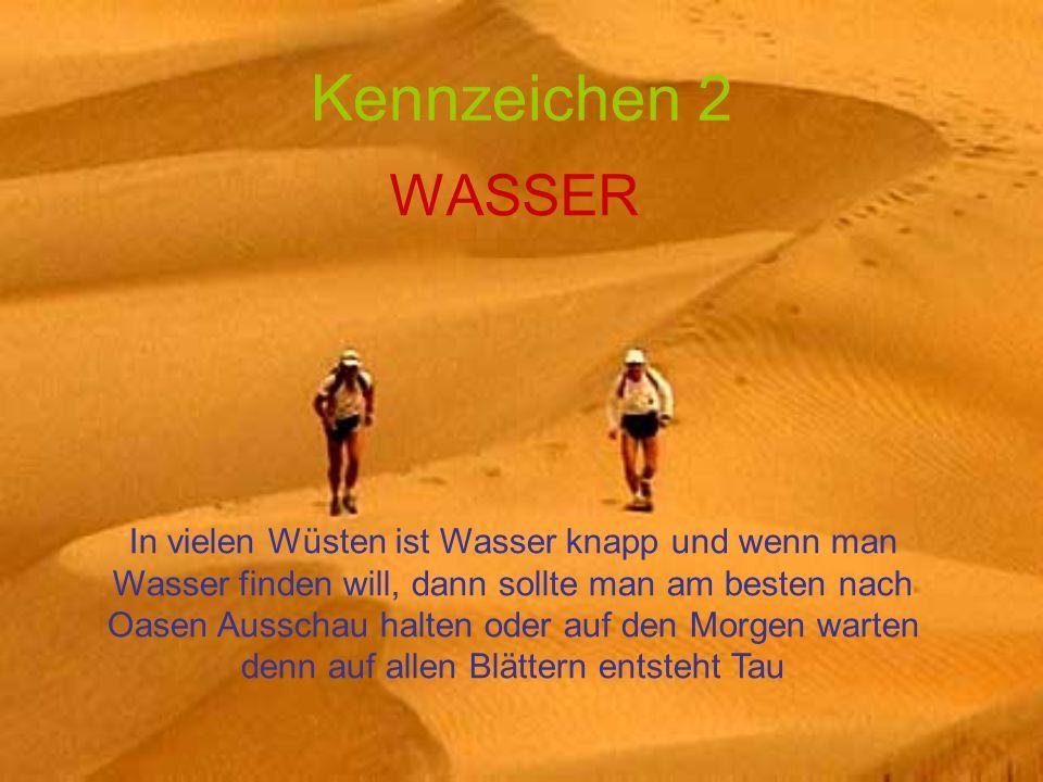 Kennzeichen 2 WASSER In vielen Wüsten ist Wasser knapp und wenn man Wasser finden will, dann sollte man am besten nach Oasen Ausschau halten oder auf