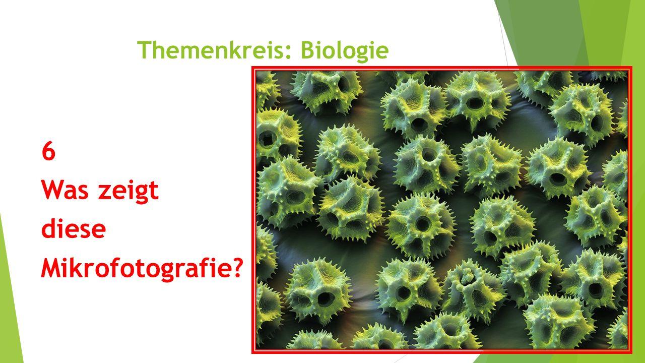 Themenkreis: Biologie 6 Was zeigt diese Mikrofotografie?