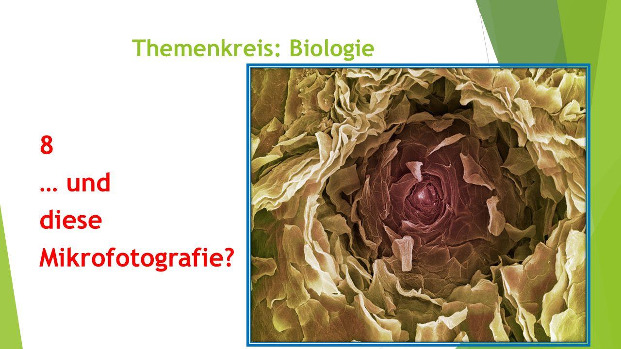 Themenkreis: Biologie 8 … und diese Mikrofotografie?
