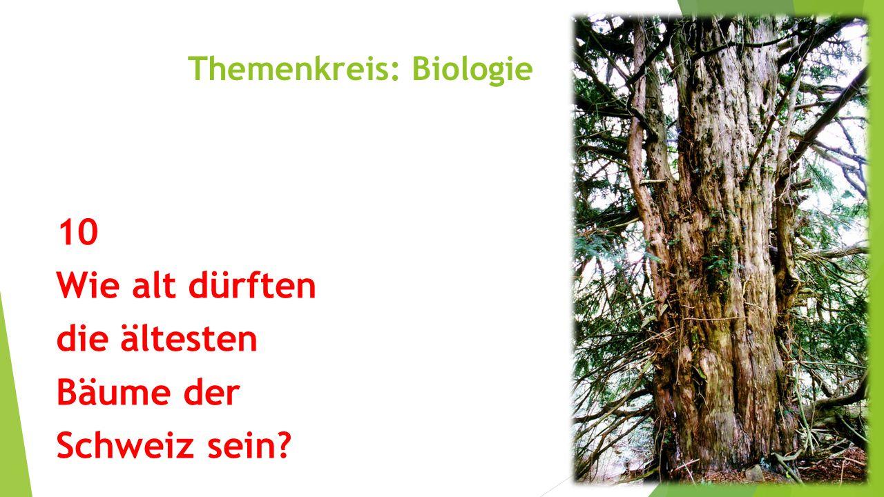 Themenkreis: Biologie 10 Wie alt dürften die ältesten Bäume der Schweiz sein?