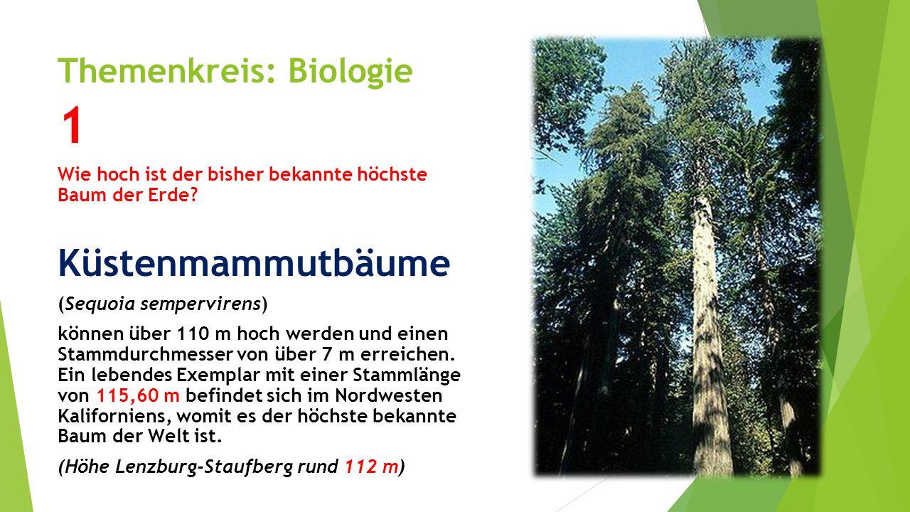 Themenkreis: Biologie 1 Wie hoch ist der bisher bekannte höchste Baum der Erde? Küstenmammutbäume (Sequoia sempervirens) können über 110 m hoch werden