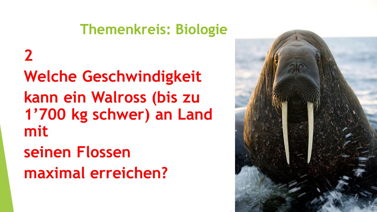 Themenkreis: Biologie 2 Welche Geschwindigkeit kann ein Walross (bis zu 1'700 kg schwer) an Land mit seinen Flossen maximal erreichen?