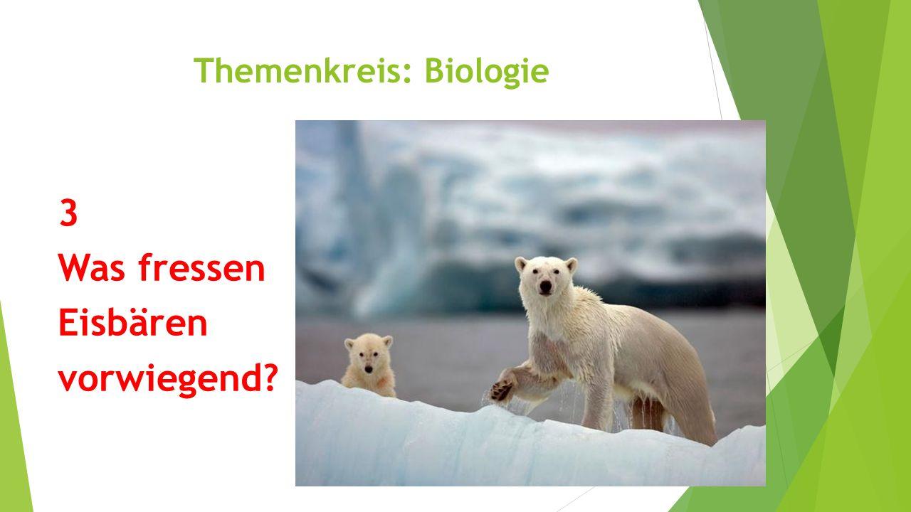 Themenkreis: Biologie 3 Was fressen Eisbären vorwiegend? Robben (Walrosse)