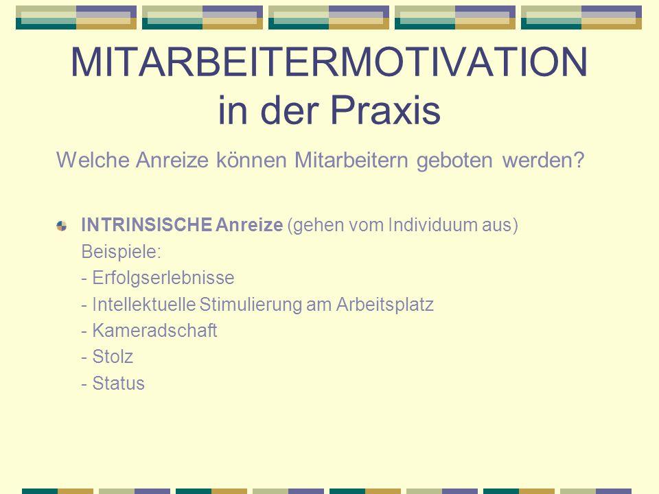 MITARBEITERMOTIVATION in der Praxis - Kriterien für ein Anreizsystem Was soll ein Anreizsystem bewirken.