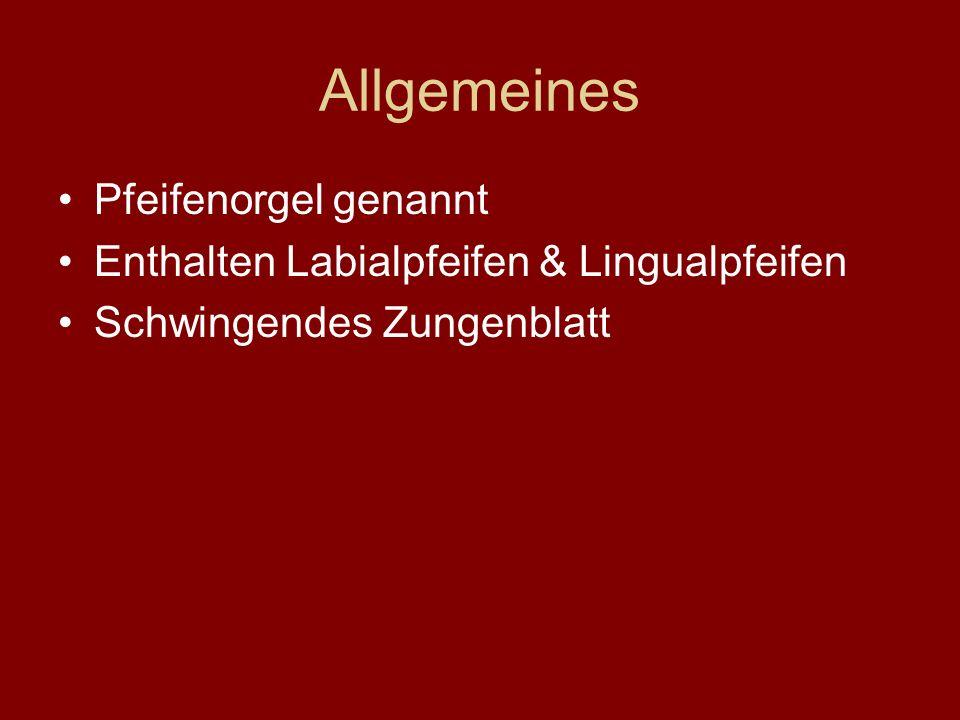 Allgemeines Pfeifenorgel genannt Enthalten Labialpfeifen & Lingualpfeifen Schwingendes Zungenblatt