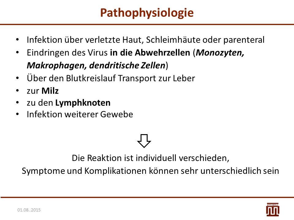 01.08..2015 Pathophysiologie Sekundärinfektionen (Lymphozytopenie) Septischer Schock Blutgerinnsel Hämorrhagien Hirnödem Nierenversagen Leberversagen Pankreatitis (starke Bauchschmerzen) Darmschädigung führt zu Durchfall und Dehydratation