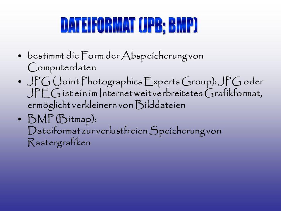bestimmt die Form der Abspeicherung von Computerdaten JPG (Joint Photographics Experts Group): JPG oder JPEG ist ein im Internet weit verbreitetes Grafikformat, ermöglicht verkleinern von Bilddateien BMP (Bitmap): Dateiformat zur verlustfreien Speicherung von Rastergrafiken