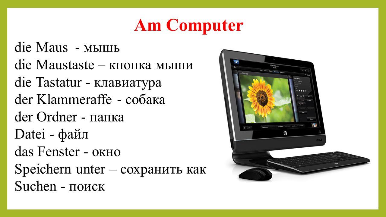 Am Computer die Maus - мышь die Maustaste – кнопка мыши die Tastatur - клавиатура der Klammeraffe - собака der Ordner - папка Datei - файл das Fenster
