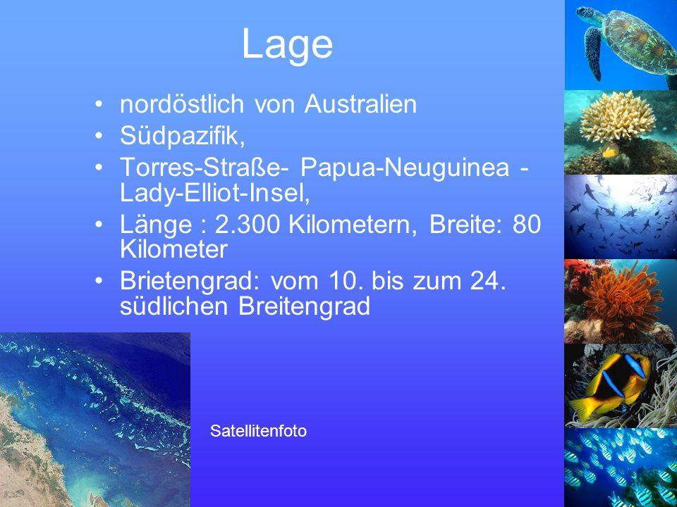 Lage nordöstlich von Australien Südpazifik, Torres-Straße- Papua-Neuguinea - Lady-Elliot-Insel, Länge : 2.300 Kilometern, Breite: 80 Kilometer Brietengrad: vom 10.