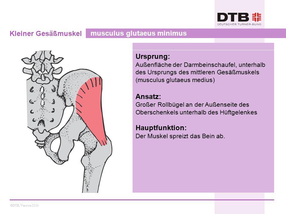 ©DTB, Version 2010 Kleiner Gesäßmuskel musculus glutaeus minimus Ursprung: Außenfläche der Darmbeinschaufel, unterhalb des Ursprungs des mittleren Gesäßmuskels (musculus glutaeus medius) Ansatz: Großer Rollbügel an der Außenseite des Oberschenkels unterhalb des Hüftgelenkes Hauptfunktion: Der Muskel spreizt das Bein ab.