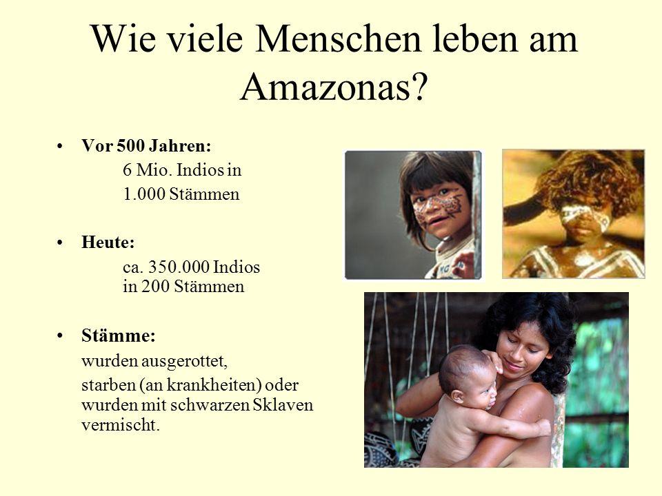 Wie viele Menschen leben am Amazonas? Vor 500 Jahren: 6 Mio. Indios in 1.000 Stämmen Heute: ca. 350.000 Indios in 200 Stämmen Stämme: wurden ausgerott