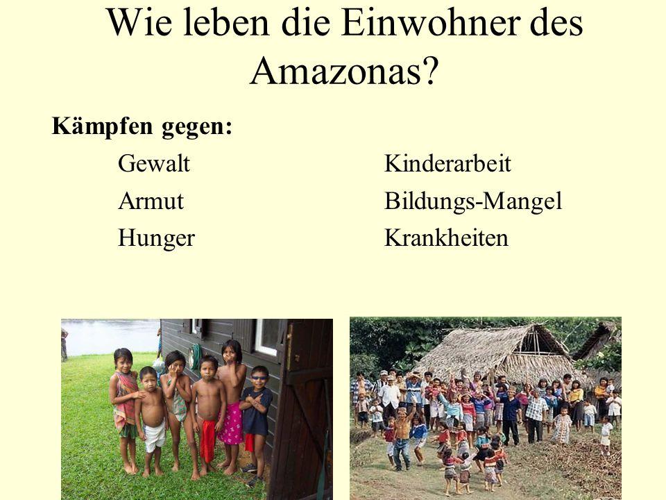Wie leben die Einwohner des Amazonas? Kämpfen gegen: GewaltKinderarbeit ArmutBildungs-Mangel HungerKrankheiten