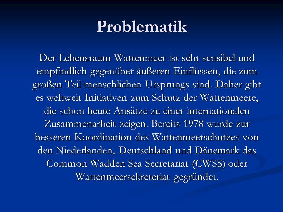 Problematik Der Lebensraum Wattenmeer ist sehr sensibel und empfindlich gegenüber äußeren Einflüssen, die zum großen Teil menschlichen Ursprungs sind.