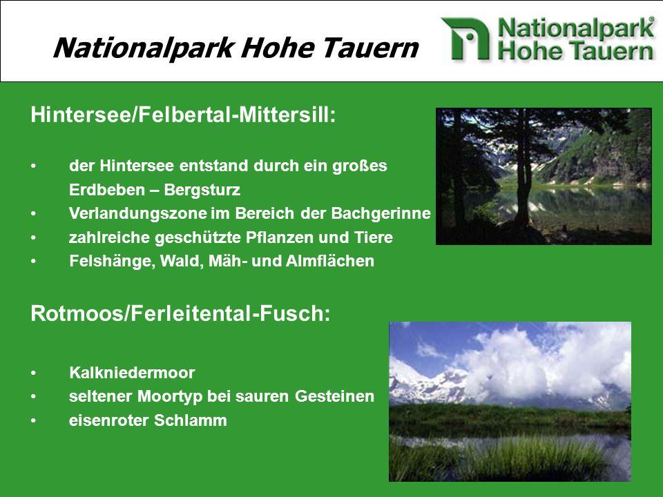 10 Hintersee/Felbertal-Mittersill: der Hintersee entstand durch ein großes Erdbeben – Bergsturz Verlandungszone im Bereich der Bachgerinne zahlreiche
