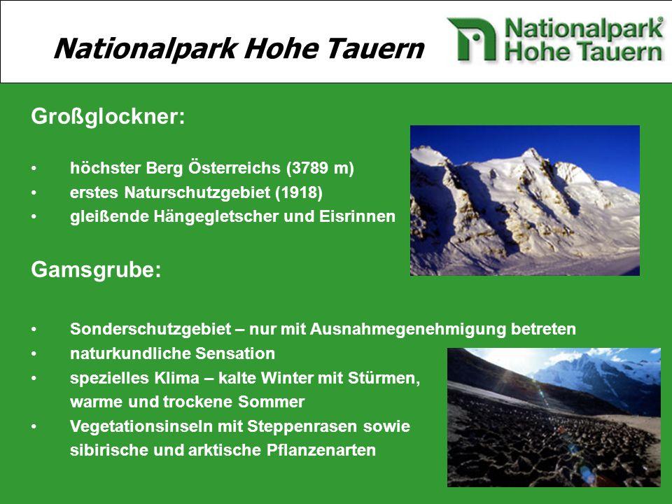 12 Großglockner: höchster Berg Österreichs (3789 m) erstes Naturschutzgebiet (1918) gleißende Hängegletscher und Eisrinnen Gamsgrube: Sonderschutzgebi