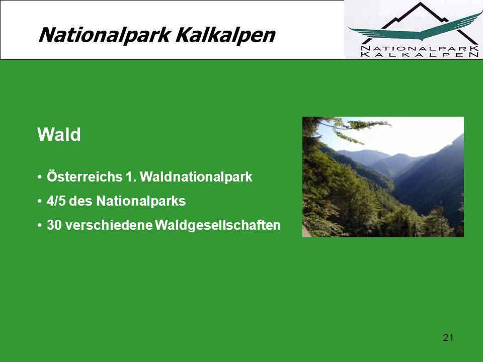 21 Nationalpark Kalkalpen Wald Österreichs 1. Waldnationalpark 4/5 des Nationalparks 30 verschiedene Waldgesellschaften