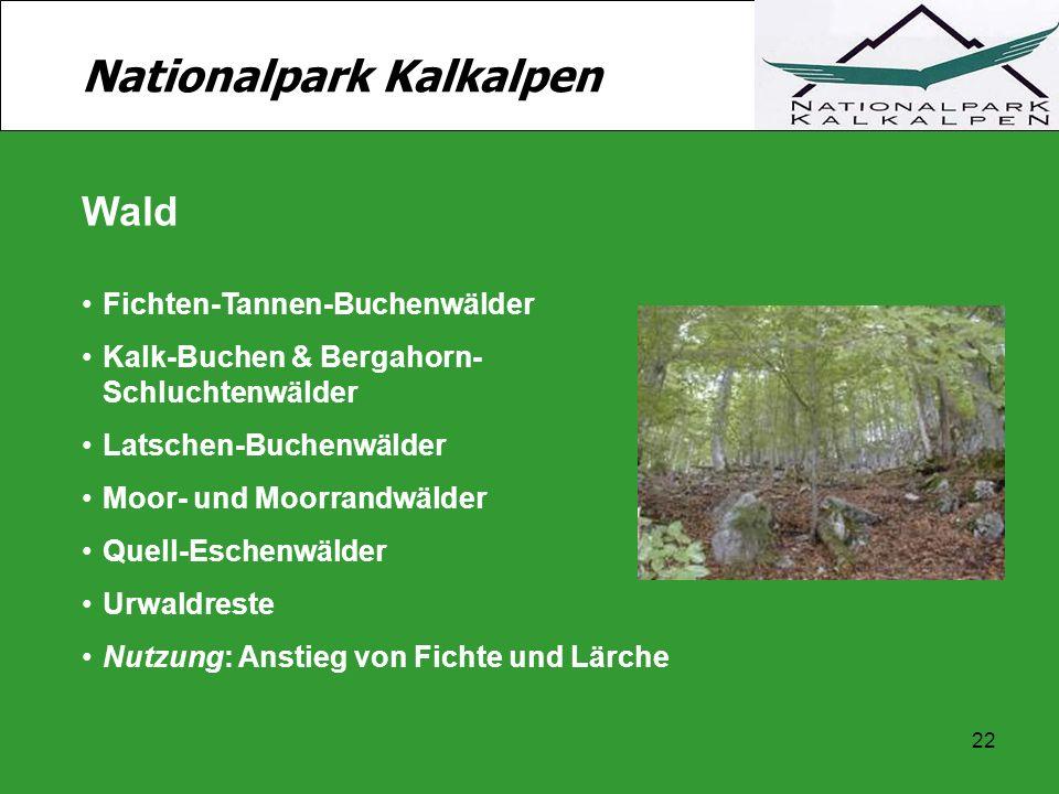 22 Nationalpark Kalkalpen Wald Fichten-Tannen-Buchenwälder Kalk-Buchen & Bergahorn- Schluchtenwälder Latschen-Buchenwälder Moor- und Moorrandwälder Qu